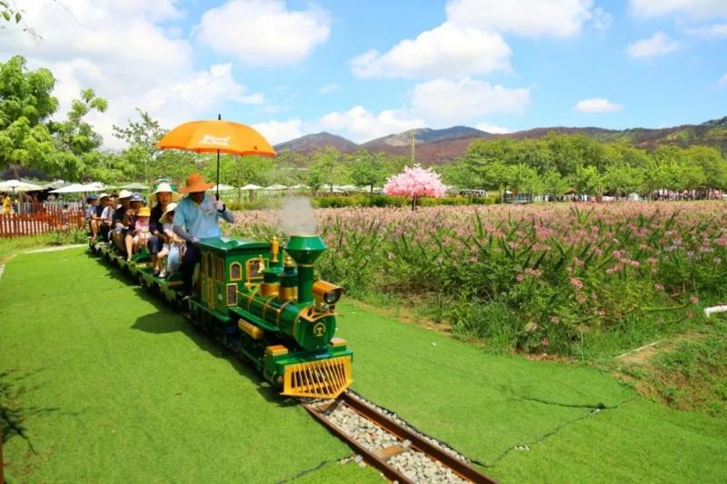 景区购买观光小火车的好处到底有多少?