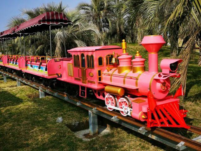 常熟蒋巷生态园网红小火车上线 等你来撩